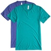 Bella + Canvas Tri-Blend T-shirt